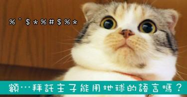 【影片】來自喵星的你!請問⋯有喵星語翻譯機嗎?