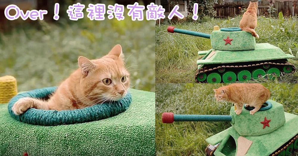 喵星人征服世界的第一步!主子乘坐坦克車出擊!