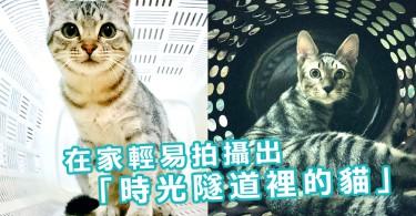 在時光隧道裡的貓?在家輕易拍攝出「未來貓」寫真~原來只要運用這件家品!