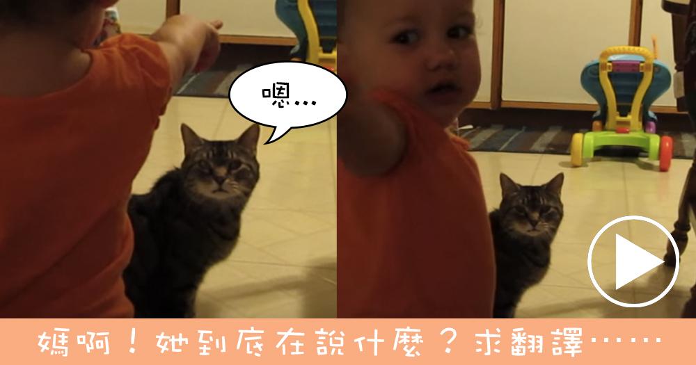 【影片】當喵星人遇上寶寶⋯超有愛!是在討論什麼呢?
