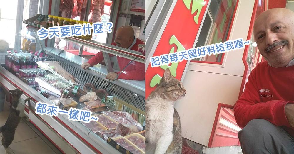 通緝「霸王餐」顧客?貓星人天天到肉店買肉不付錢,老闆依然高興介紹上等牛肉~