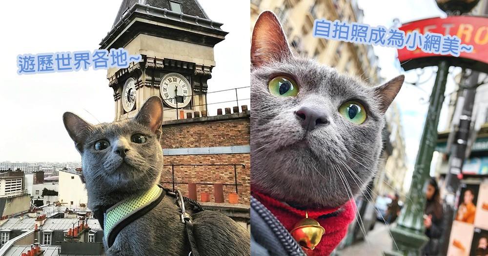 去旅行就是要自拍!貓咪可愛自拍照成為小網美,世界各地旅遊讓人好羨慕~