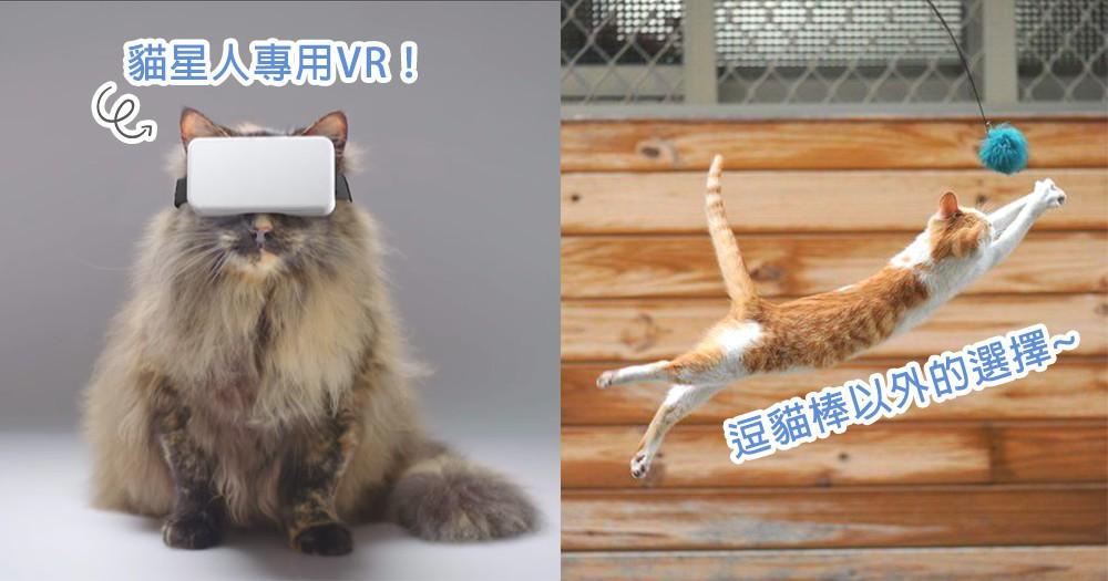 不用只玩逗貓棒了!澳洲推出全新「貓咪版VR」遊戲,讓貓星人在家也真實地抓魚~