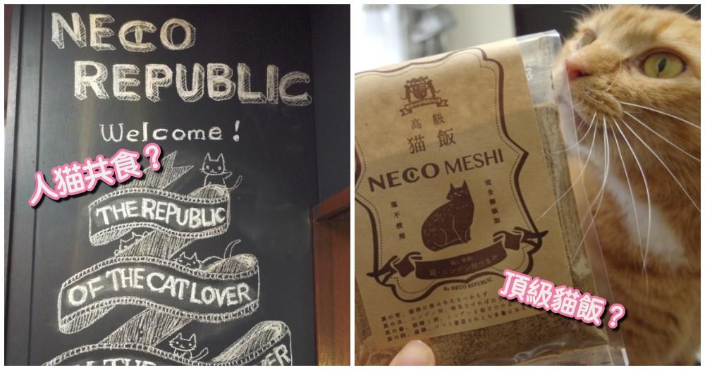 與貓共食!日本推出「高級貓飯」,讓主子與貓咪可一同享用的高級御膳!