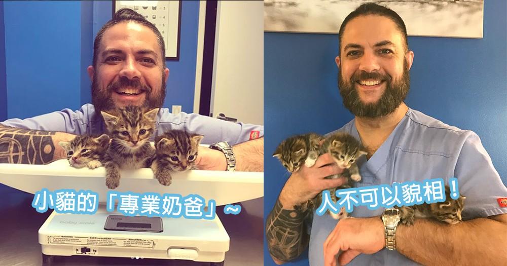 人不可以貌相!鬍子男於暴風雪後拯救小奶貓,成為「專業奶爸」大神!