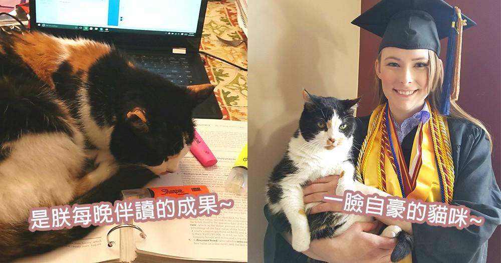 最佳伴讀小書僮!網友誠邀家中貓星人出席畢業典禮,學生時代最好的小伙伴~