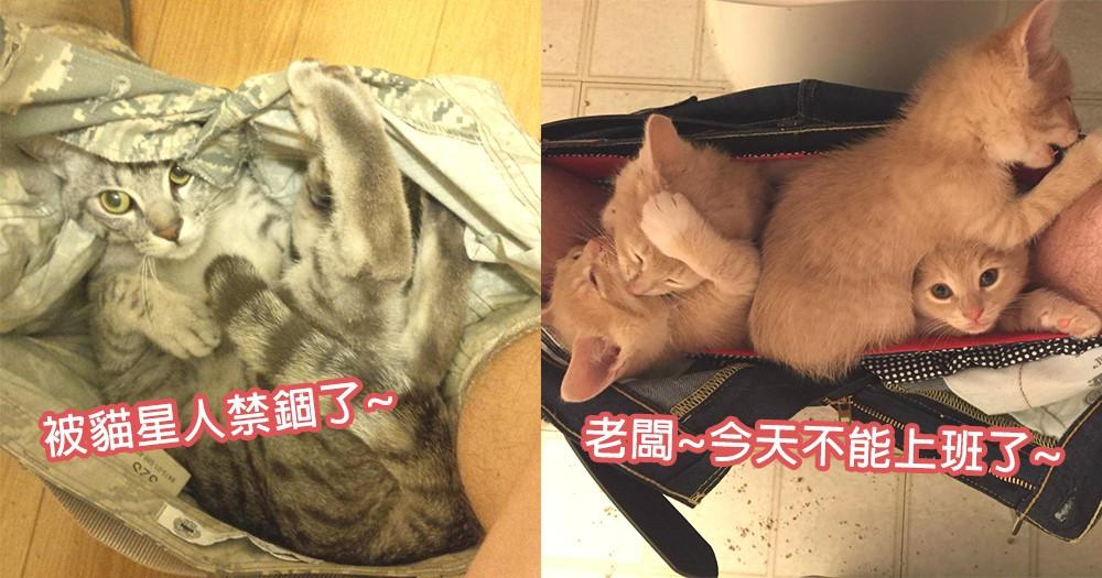 老闆,我被貓星人禁錮了!出門前總愛躲在褲子的貓星人,急著出門時最大的可愛阻礙!