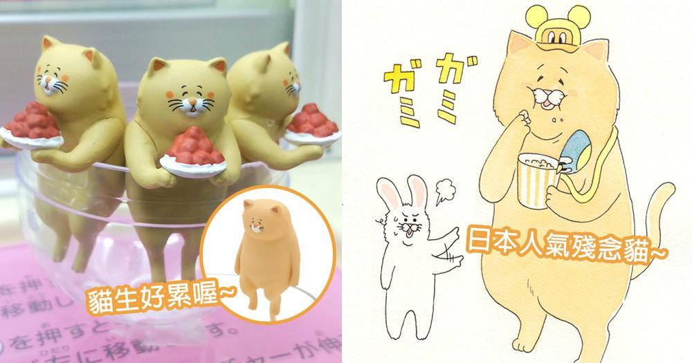 貓奴必定全套帶回家!日本大人氣「殘念貓」聯乘杯緣子,讓人感到可愛的滿滿療癒感~
