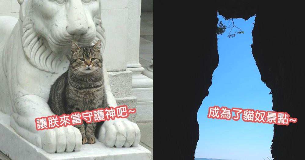 新「招財貓」上任!熊本地震後出現貓咪奇石,負起守衛整村子的責任!