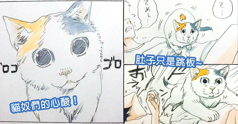 主子你知道你很重嗎?日本漫畫家道出貓奴們心酸,奴才的肚子就是貓咪的跳板~