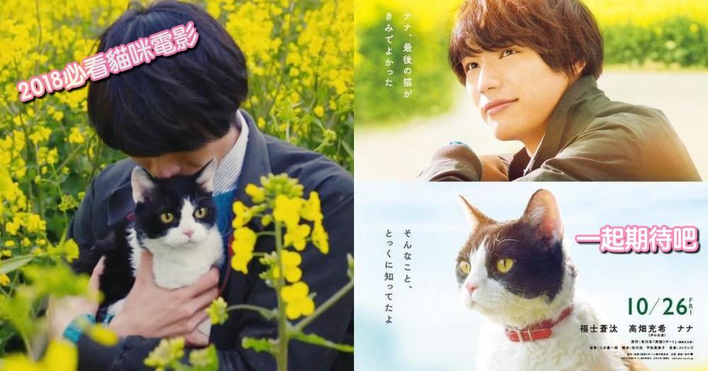 2018 兩部必看貓咪電影!「鮮肉與萌貓」的黃金組合,能不追嗎~