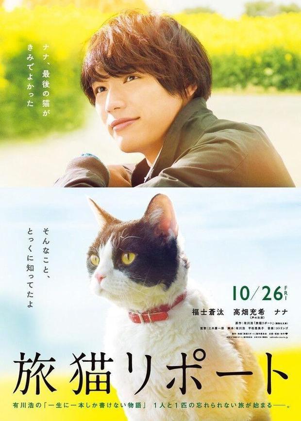 http://tabineko-movie.jp/