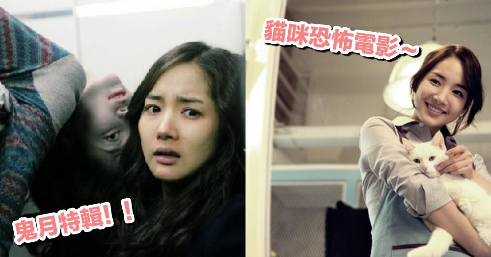 【鬼月特輯】韓國貓咪恐怖電影!朴敏英飾寵物美容師碰靈異事件,揭發恐怖事件背後的悲傷~