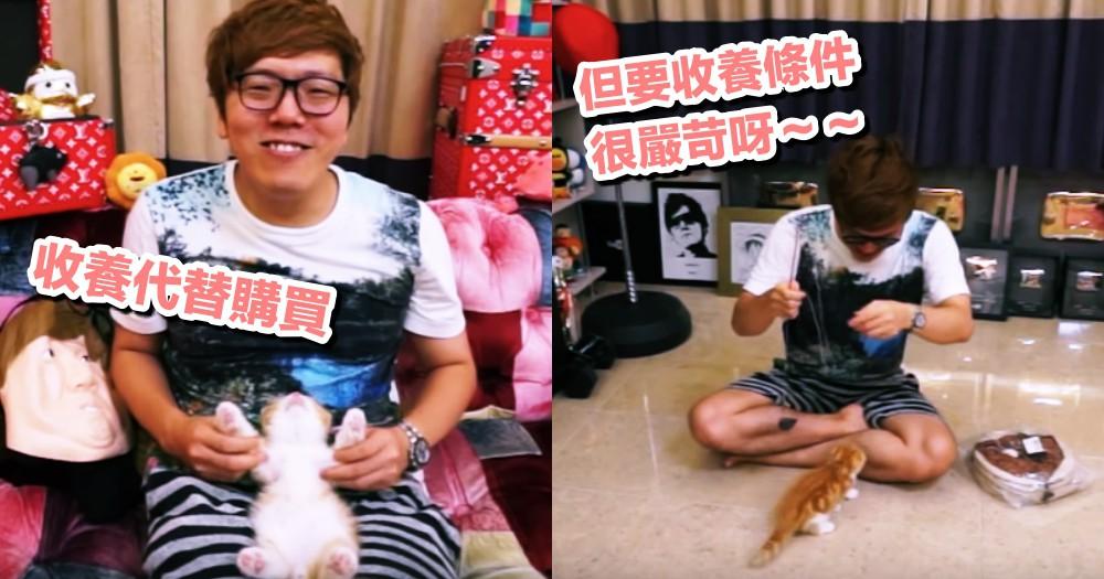 日本網友購買貓引論戰:『應該領養代替購買!』事實上日本收養條件,嚴苛到不敢想像!