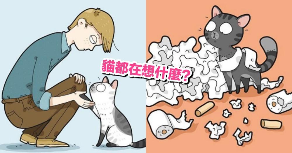 貓貓搗蛋的時候,心裡都在想什麼?超逗趣的可愛插畫,畫出貓咪心裡的小小 OS!