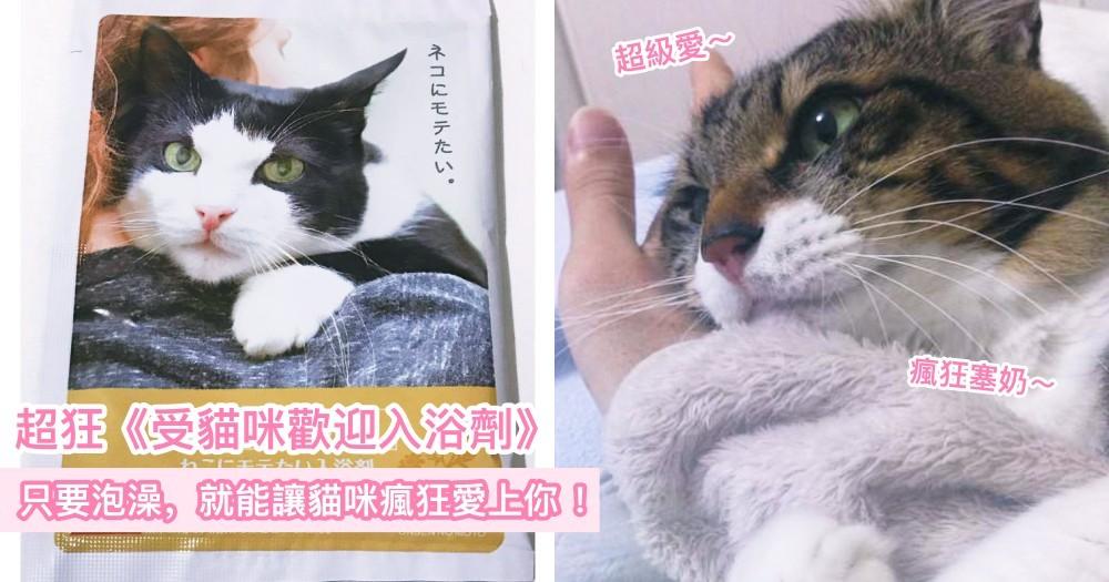 用『這個』洗澡,就能貓咪為你瘋狂!日本神發明《受貓咪歡迎入浴劑》,終於能體會被主子寵幸的港覺♡