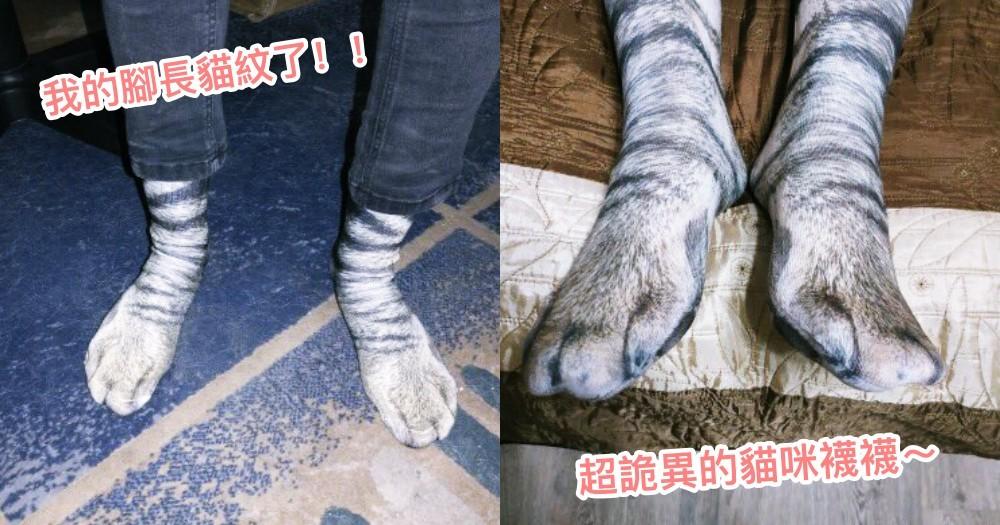 「好想要有貓掌喔!」日本推主實現你的願望,超仿真『貓襪套』套腳又保暖又療癒!