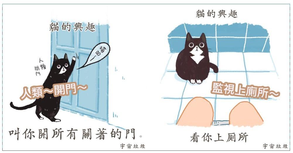 關於貓的 12 種『惡趣味』!粉專《宇宙垃圾》貓奴筆記大揭露,這些真的讓貓奴超困惑呀~