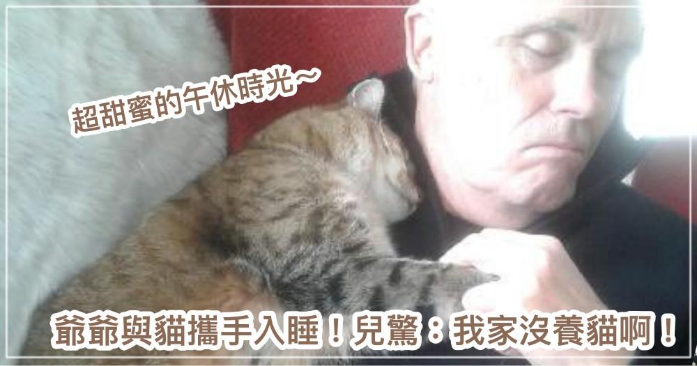 超融化!喵星人陪手術後的爺爺牽手溫馨入睡~ 兒子傻眼:恩?我家沒養貓吧...