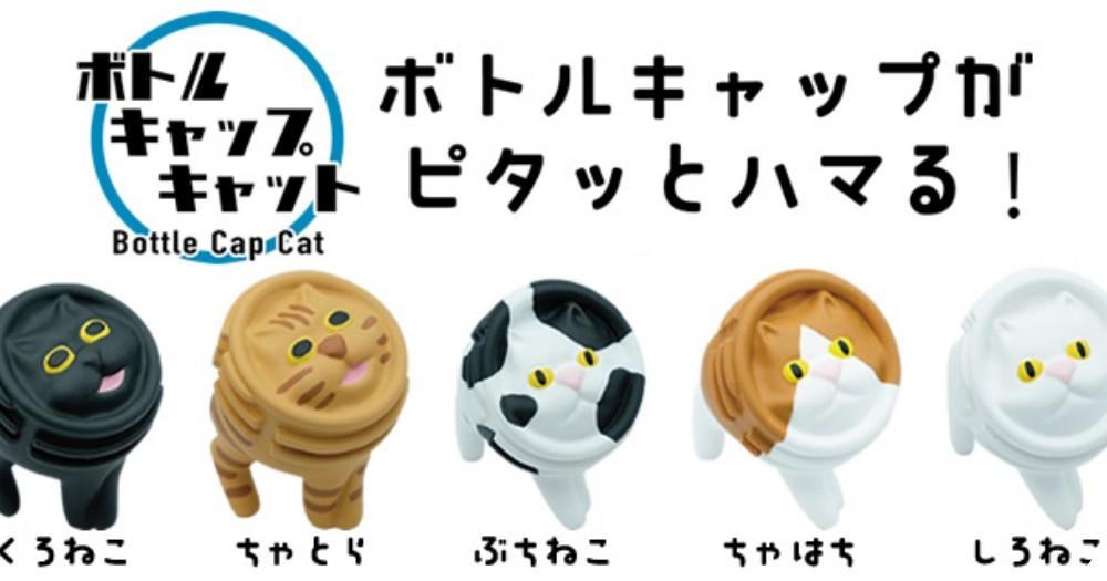 貓臉被壓扁了!Qualia 7 款醜得可愛「喵咪瓶蓋架」,雖然用途很廢還是想全部帶回家啊!
