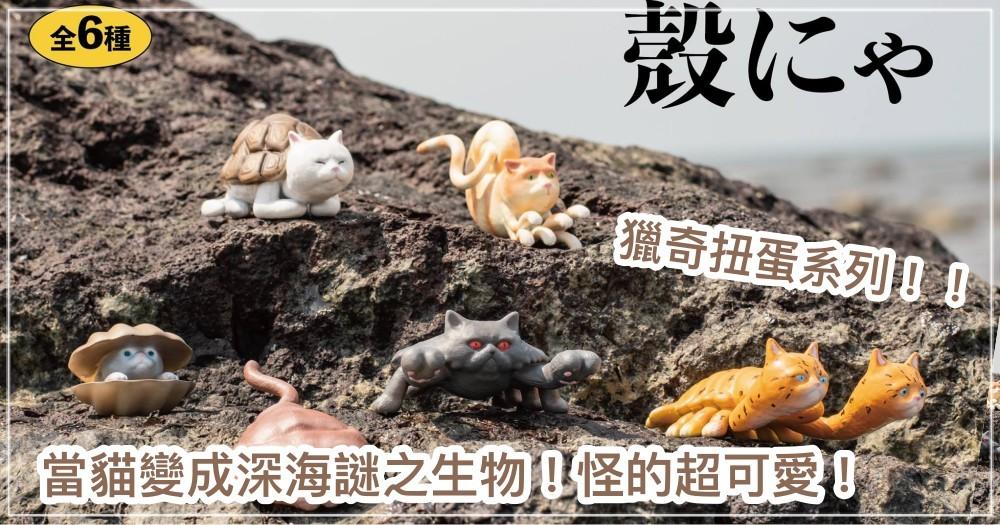獵奇扭蛋系列!「深海殼喵」超稀有海底物種,6款預購開賣起跑... 網暴動:必須集!!!