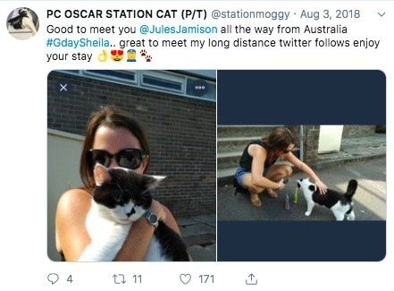 @stationmoggy