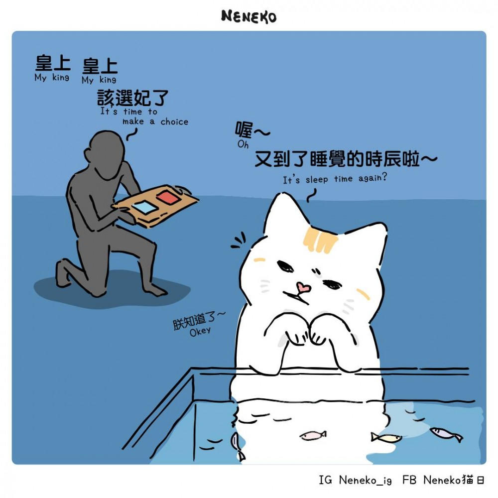 Neneko 貓日