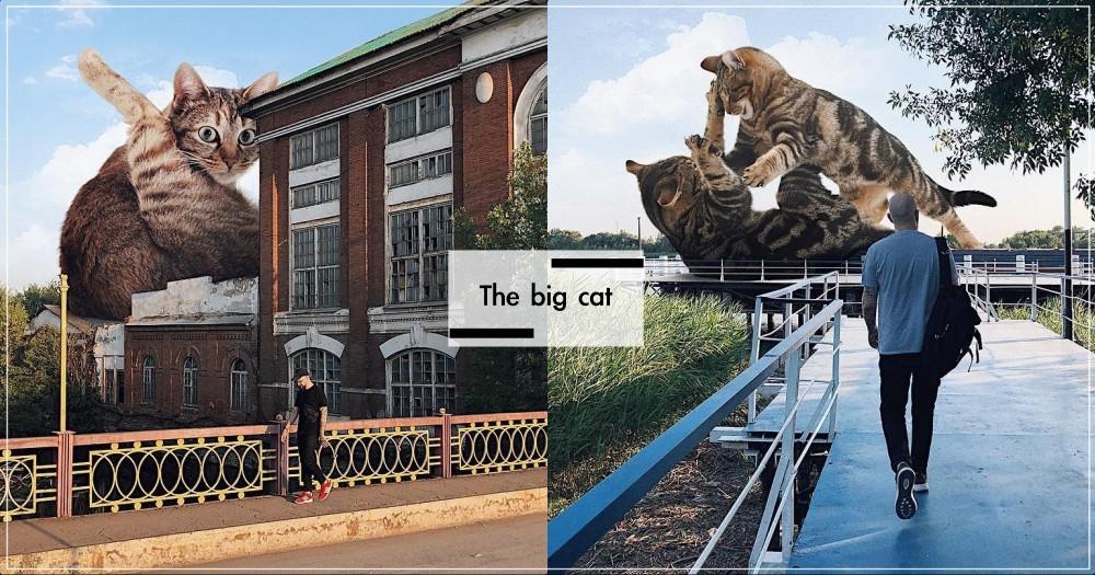 喵吉拉入侵地球!俄羅斯藝術家「把貓巨大化」,放大萌臉根本Q炸啊!