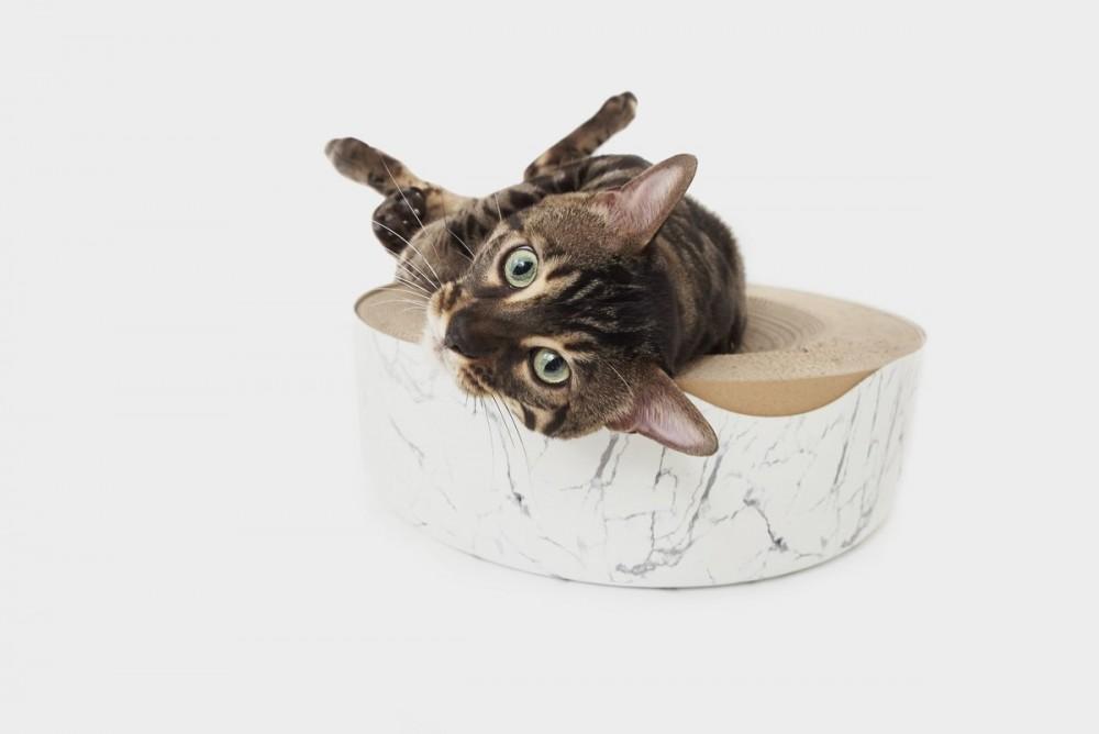 貓冥想床二代