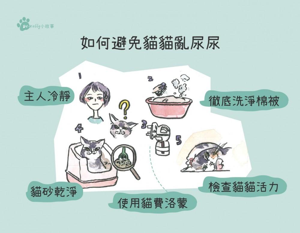 如何避免貓亂尿尿