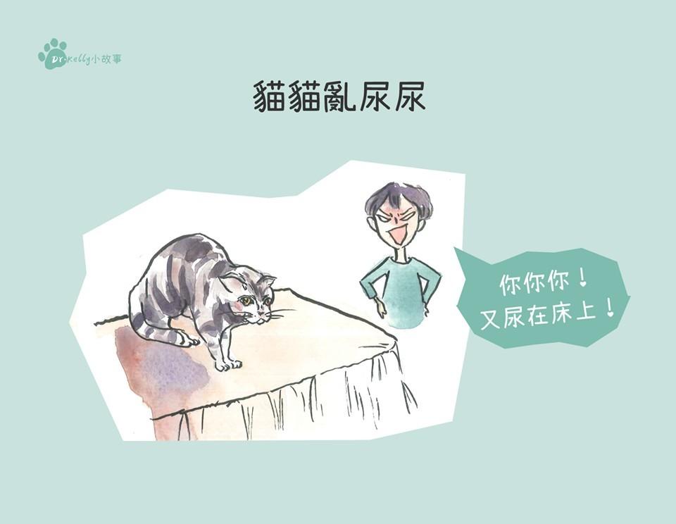 貓尿床不能罵