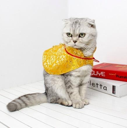 貓咪新年唐裝