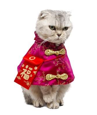 貓咪新年小披風唐裝