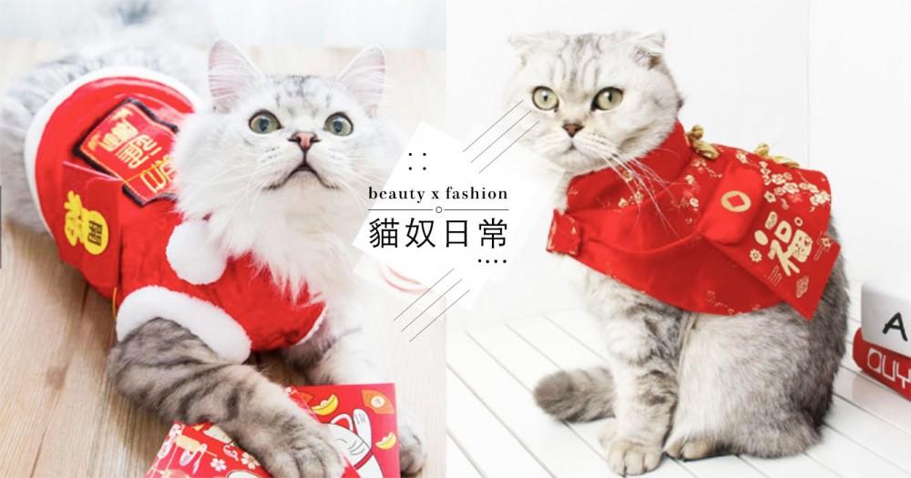 貓咪換新衣!過年必敗 5 款超討喜「拜年唐裝」,還附小紅包袋可以裝錢錢唷!