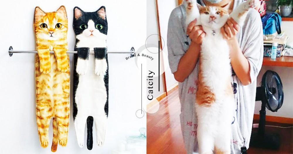 洗臉就能吸貓!日本雜貨推出「貓拉長身體毛巾」,六種花色就連肉球都神還原~