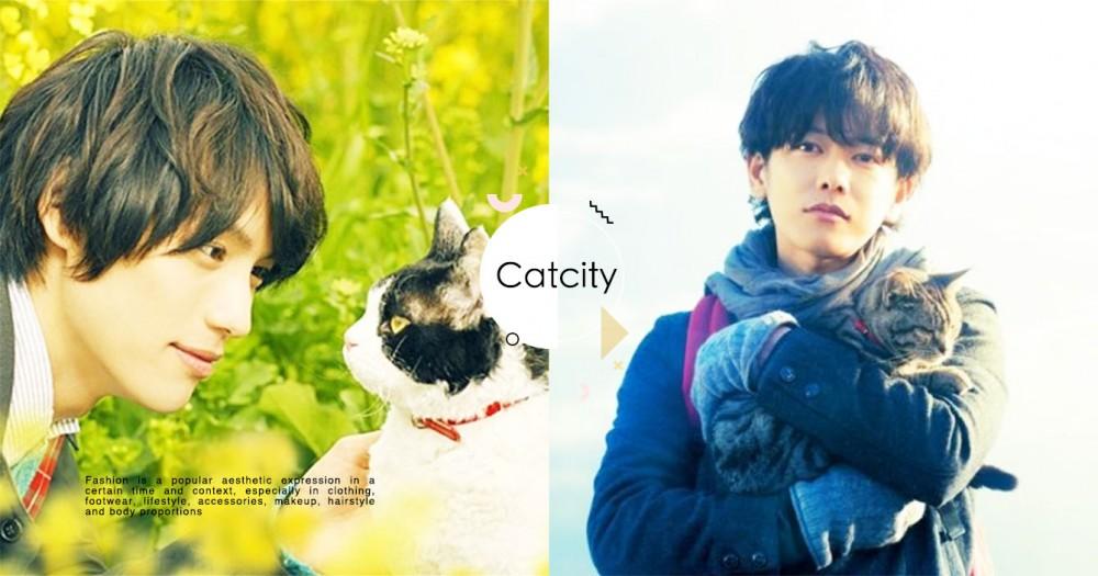 貓奴必看!小編精選 5 部療癒系日本貓咪電影,看完更珍惜與主子的相處時光!