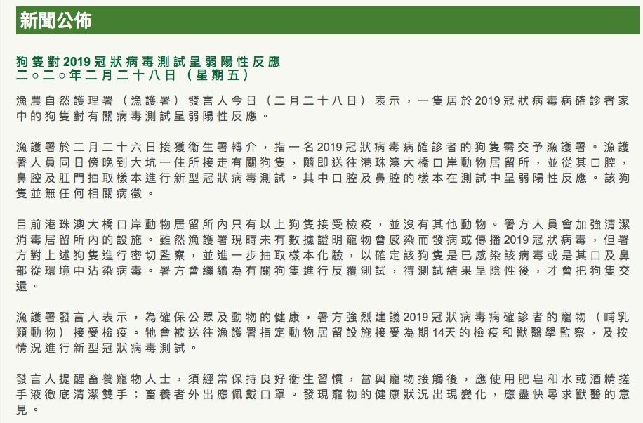 武漢肺炎,香港,寵物狗感染