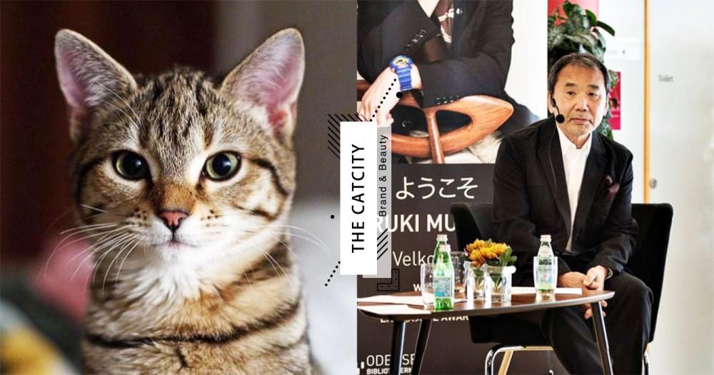 貓咪不粘膩卻有感情!日本知名作家「村上春樹」認證:養貓煩惱就沒了!